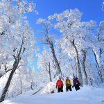 冬特集 | 冬のアウトドア・登山を楽しむ前にチェックしておきたいおすすめトピック