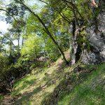 山岳ガイドが語る春の山の楽しみ方と注意点-田中ガイド