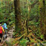 秋山特集 | 秋のアウトドア・登山を楽しむ前にチェックしておきたいおすすめトピック