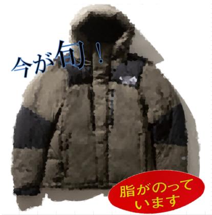 シーン別 おすすめダウンジャケット 6選 part3 ~今時なヤツ~編