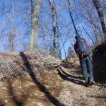 【関東-高尾・景信山】スタッフが選ぶ冬の低山(雪山)おすすめ絶景スポット11/24