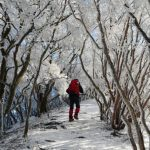 【関西-高見山地・三峰山】スタッフが選ぶ冬の低山(雪山)おすすめ絶景スポット18/24