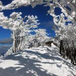 【関西-台高山脈・高見山】スタッフが選ぶ冬の低山(雪山)おすすめ絶景スポット17/24
