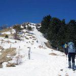 【関東-大菩薩嶺】スタッフが選ぶ冬の低山(雪山)おすすめ絶景スポット10/24