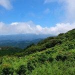 【関西-琵琶湖周辺 伊吹山・比良山】 好日山荘スタッフがオススメする春の花の山!
