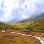 【信州 栂池高原・白馬大池】 紅葉の綺麗な山へ出かけよう!
