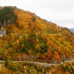 【北陸 白山】 紅葉の綺麗な山へ出かけよう!