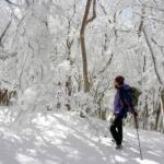 【冬山・雪山】素晴らしき雪山の世界 写真展 ~雪の林間・ハイキング・人々 編~